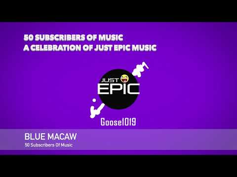 blue-macaw-|-50-subscribers-of-music---a-celebration-of-just-epic-music