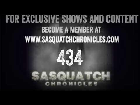 SC EP:434 Strange Lights In The Woods