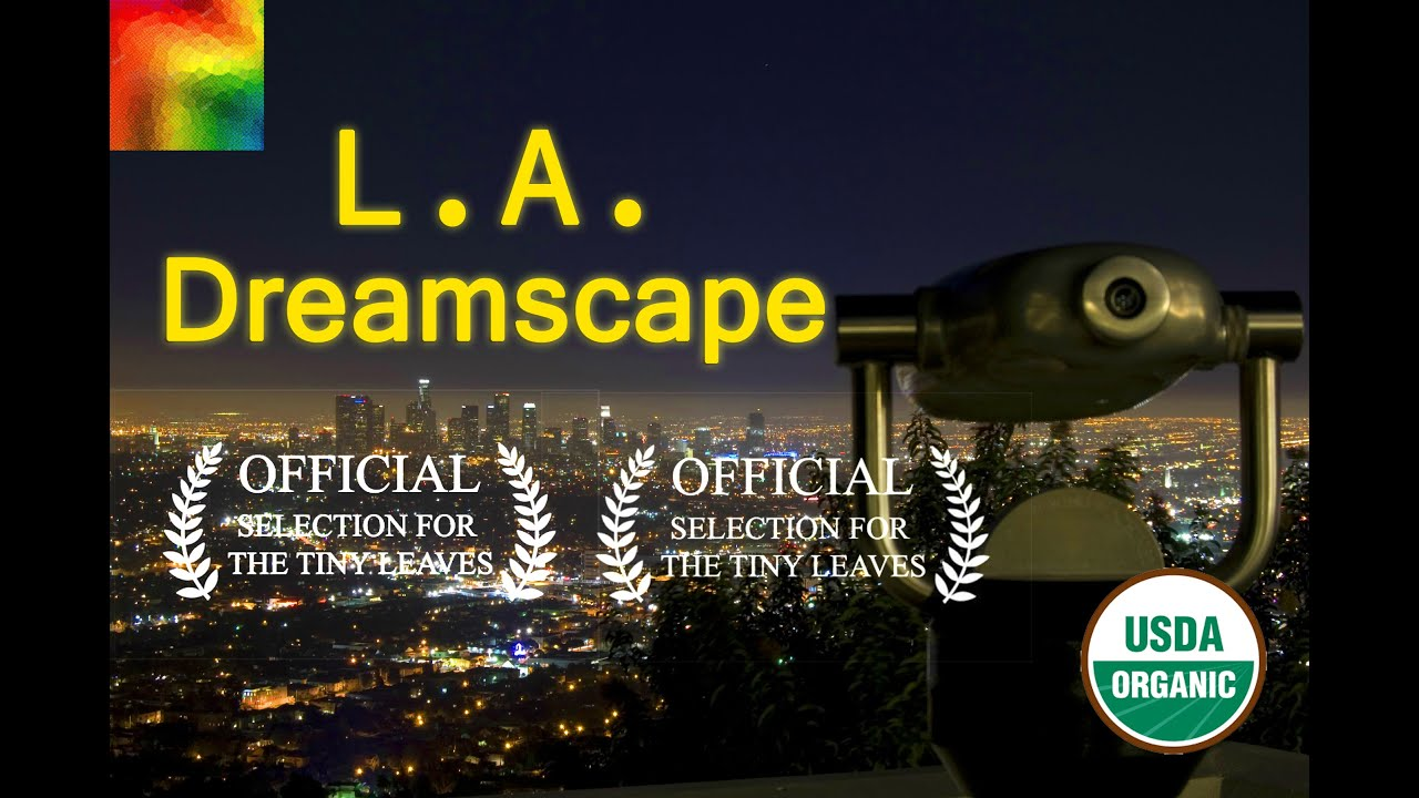 Beautiful Los Angeles Dreamscape – memes