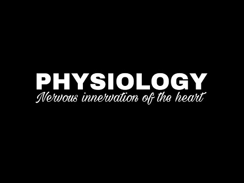 NERVOUS INNERVATION OF THE HEART