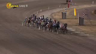Vidéo de la course PMU PRIX KITO DU VIVIER