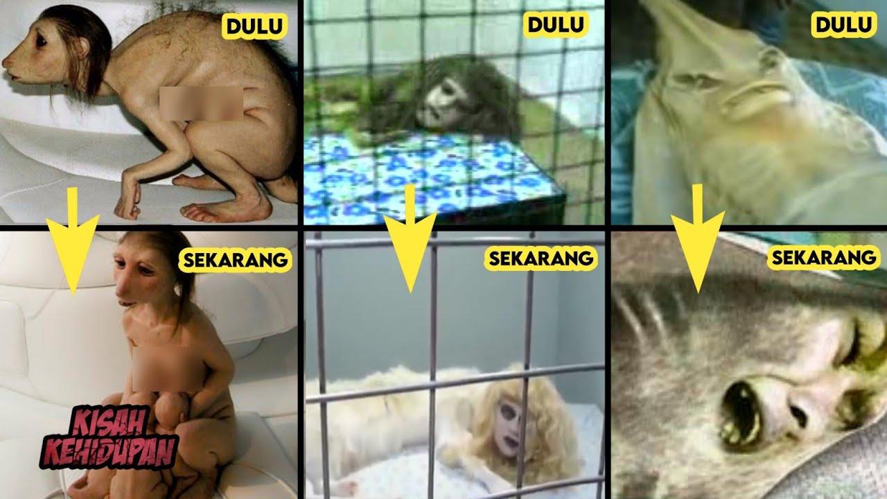 Download Kutukan Seram Anak Durhaka Paling Fenomenal dan Legendaris di Tahun 2000 an
