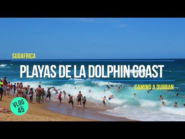 Playas de la Dolphin Coast 🌴⛱️🌊camino a Durban 🚗