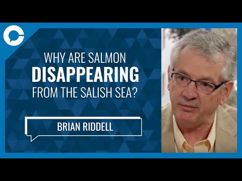 Conversations That Matter - Ep 87 - Brian Riddell - Salish Sea Marine Survival Project