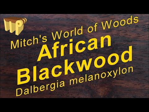 African Blackwood dalbergia melanoxylon  Mitch's World of Woods