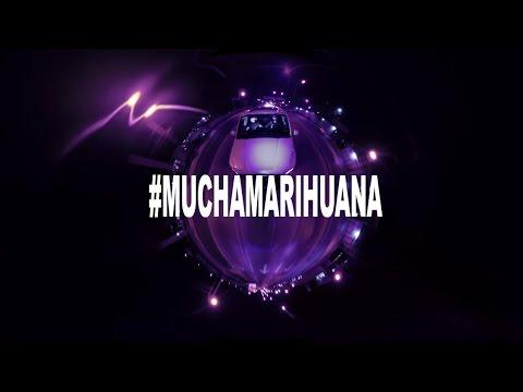 Cartel de Santa - Mucha Marihuana #VIEJOMARIHUANO
