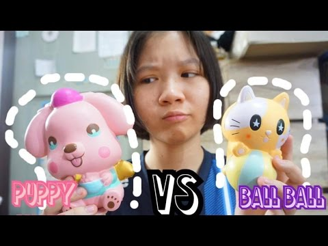 puppy-angel-vs-ball-ball-cat-!!😱-|-250-บาท❤️🎉