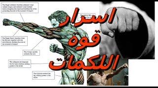 The secret of strong punches                              سر اللكمات القوية