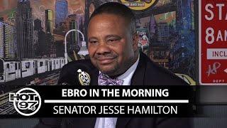 Senator Jesse Hamilton Talks IDC + New Bill For #RaiseTheAge