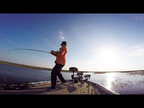 Hunting Down Trophy Florida Bass