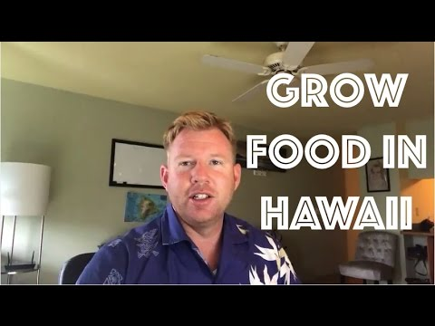 Grow Food in Hawaii - Live Off The Land