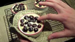 Blueberry Yogurt Tarts (gluten-free And Organic)