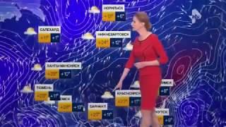 Погода сегодня, завтра, видео прогноз погоды на 3 дня 14.6.2017