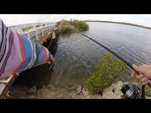 Trip Outside the Resort - Fishing Bridges in Cuba! | Cuba Ep. 4