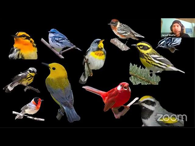 Podcast blog: conversation with Dr. Erik Johnson about avian molts & plumages