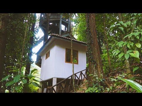 Exploring Kuala Lumpur: KL Forest Eco Park - Malaysia 2018