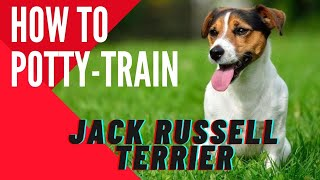 **how To Potty-train Your Jack Russell Terrier Today !! Click Here