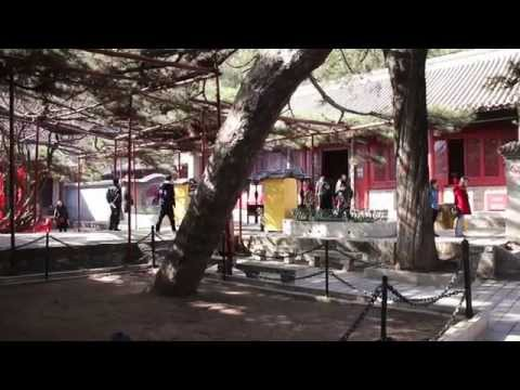 Traveller: China, Beijing, Huairou District, Hongluo Temple