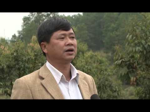 Phóng sự: Trường Đại học Nông - Lâm Bắc Giang ứng dụng khoa học trong Nông nghiệp