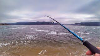 Льда нет, но вы держитесь!!! Ловля окуня на отводной поводок. Рыбалка 2019