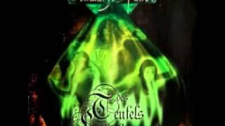 Des Teufels Lockvögel - Der Spielmann von Pertenstein