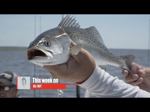 Pamlico Trout And Puppy Drum| Carolina ALL OUT | S-4/Ep10