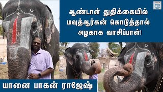 trichy-temple-andal-elephant-story-temple-elephant-story-andal-elephant-story-hindu-tamil-thisai