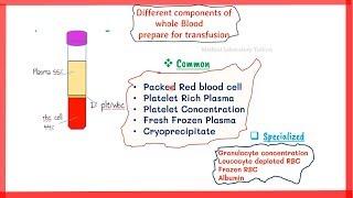 blood components preparation || blood bank || preparation of blood components