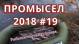 ПРОМЫСЕЛ 2018. #19. Рыбалка, открываю охоту.