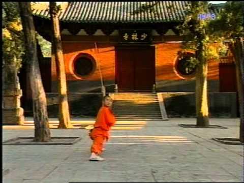 Shaolin Temple monks documentary (2)
