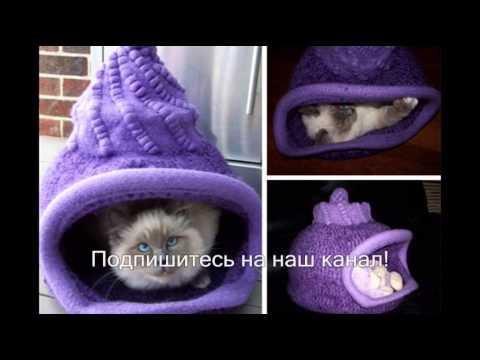 Когтеточки-домики для кошек на таобао. 620. Когтеточки-домики для кошек на таобао. 381. Скидка 16%. Когтеточки-домики для кошек на таобао. 1116 935. Скидка 44%. Когтеточки-домики для кошек на таобао. 1622 916. Когтеточки-домики для кошек на таобао. 104. Когтеточки-домики для кошек на таобао.