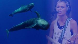Sea of Dolphin Tears, PRANA, Море Cлез Дельфина