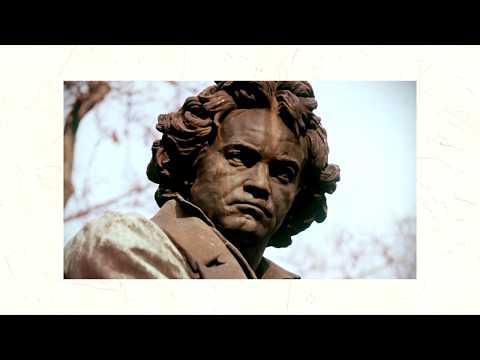Людвиг ван Бетховен.  А вы знали об этом?