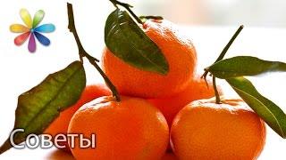 Как выбрать мандарины. Лучшие советы «Все буде добре» от 14.12.15