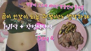 간헐적단식 &  1일1식 건강하게 살빼기!!! …