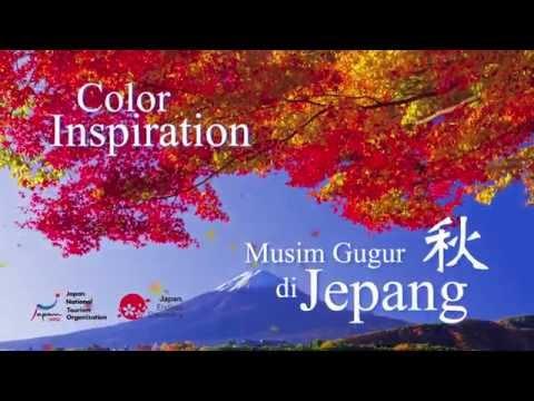 TVC JNTO Color Inspiration Autumn version.B
