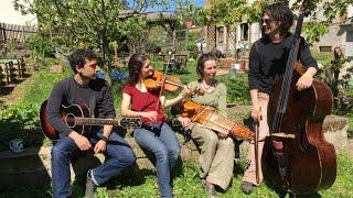 Strömkarlen spielen am 21.5.17 das erste mal als Quartett in Dresden