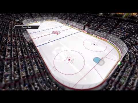 VHL Toronto @ Anaheim 7.21.13