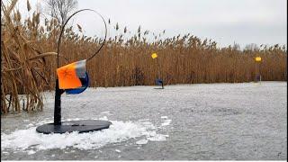 ЛОВЛЯ ЩУКИ на ЖЕРЛИЦЫ по ПЕРВОМУ ЛЬДУ Зимняя рыбалка на жерлицы