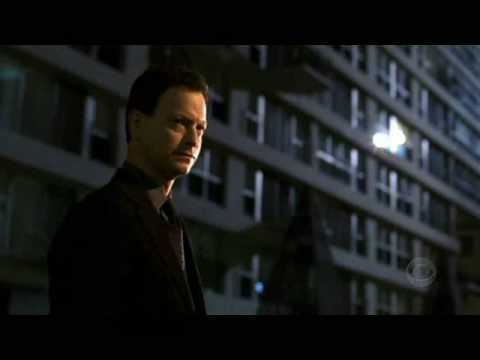 Gary Sinise as Mac Taylor  Find Yourself