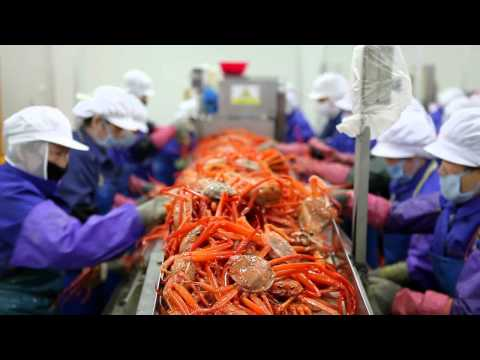 Seafood Company SUNGJIN TRADING CO., LTD.