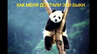 Форекс смешной ( Forex funny )