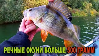 Наловил КРУПНОГО ОКУНЯ на джиг Рыбалка на реке Быстрая Сосна