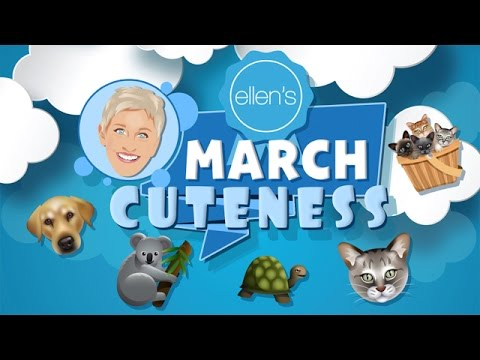 Announcing March Cuteness!