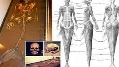 Meerjungfrauen Nixen und Sirenen Mythos und Legende