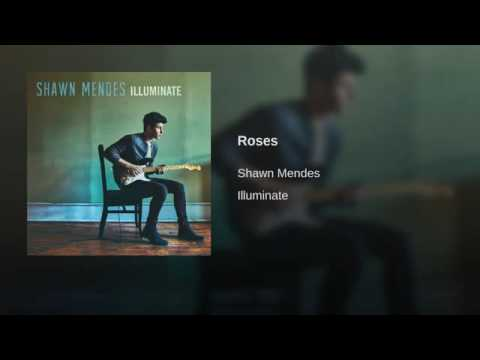 Shawn Mendes - Roses (audio)