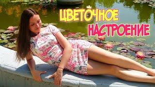 Никитский ботанический сад ботанический сад Крым