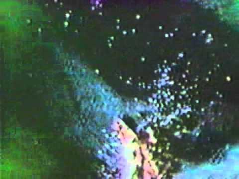SBD Dauntless dive bomber