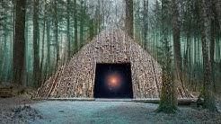 10 Düstere Geheimnisse der Wälder, die niemand lösen kann!