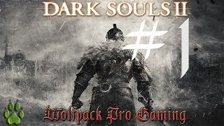 Dark souls II pc en español - Gameplay - Walkthrough - Parte 1. La creacion de Fluffy
